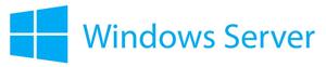 Windows Server Symbol von Microsofrt